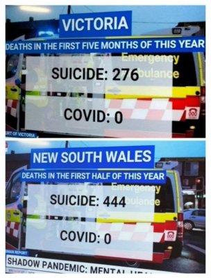 Suizid-Tode vs. Covid-Todesfälle in 2 Lockdown-Städten